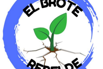 El Brote Rebelde